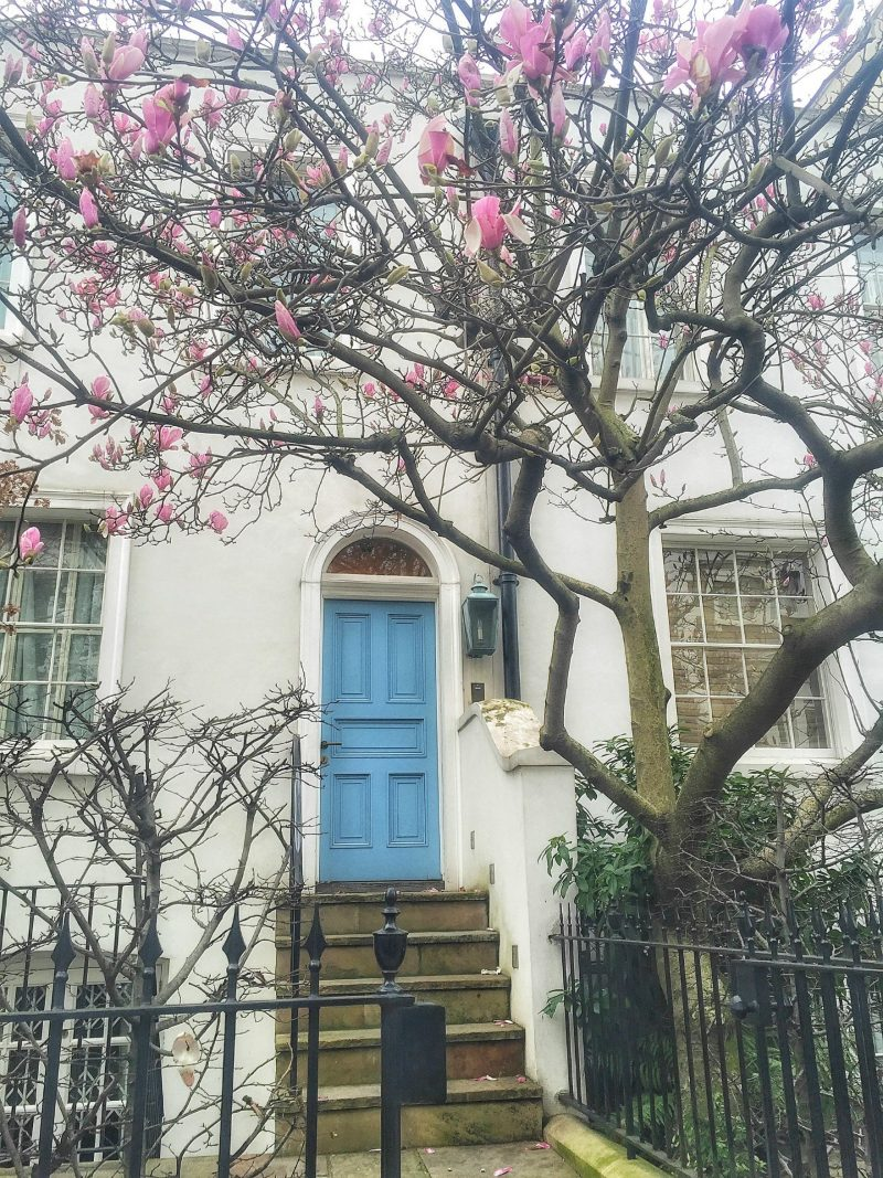 notting hill door